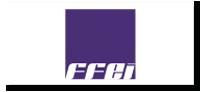 logo-ffei